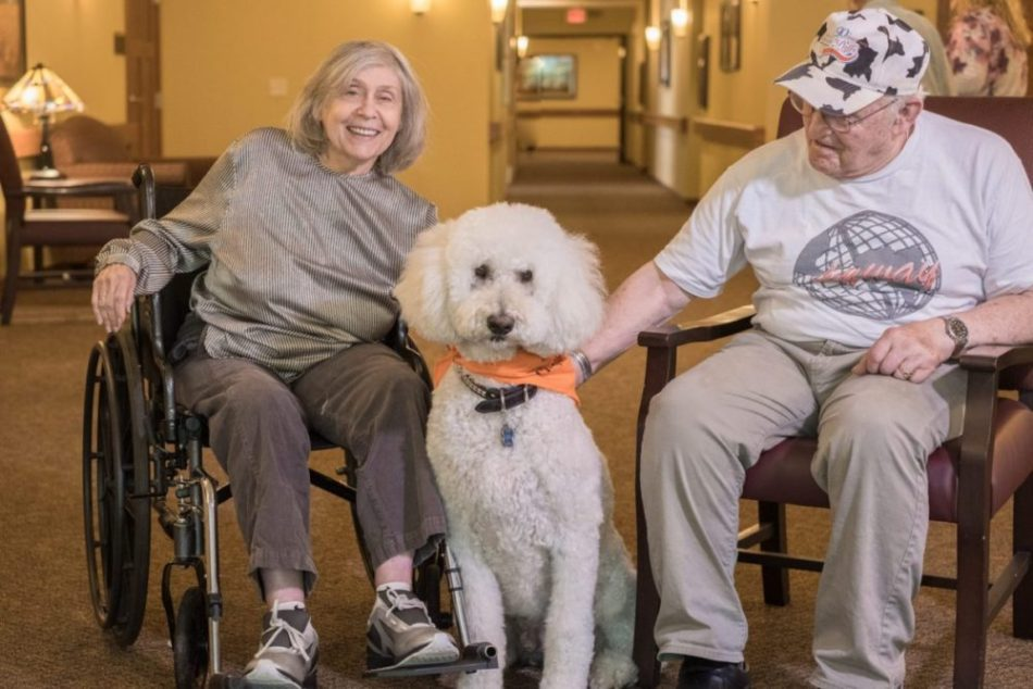 Senior man and woman enjoy time with a dog during pet therapy at Heritage Middleton.