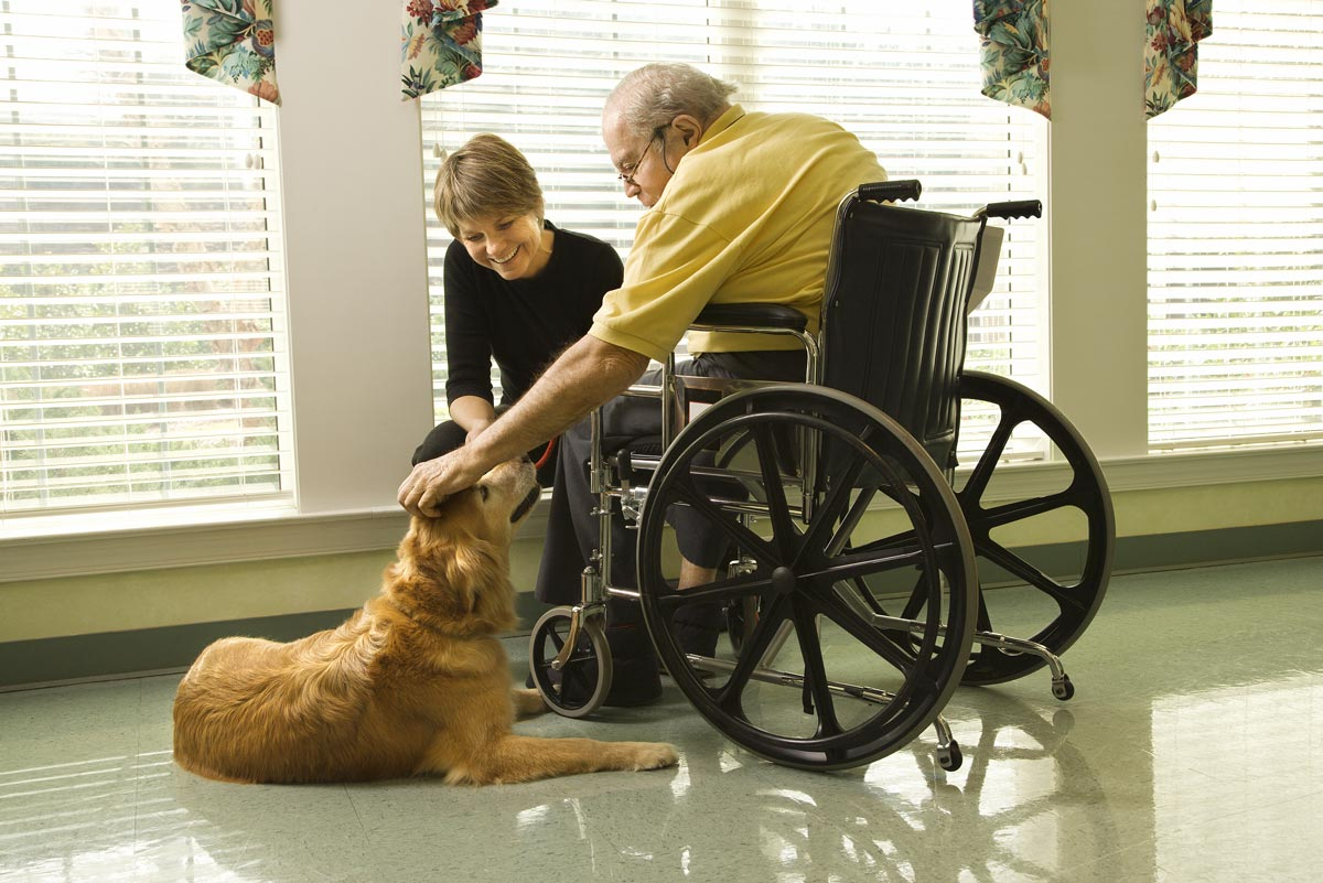 Pet therapy being used as a way to support mental health for aging adults.