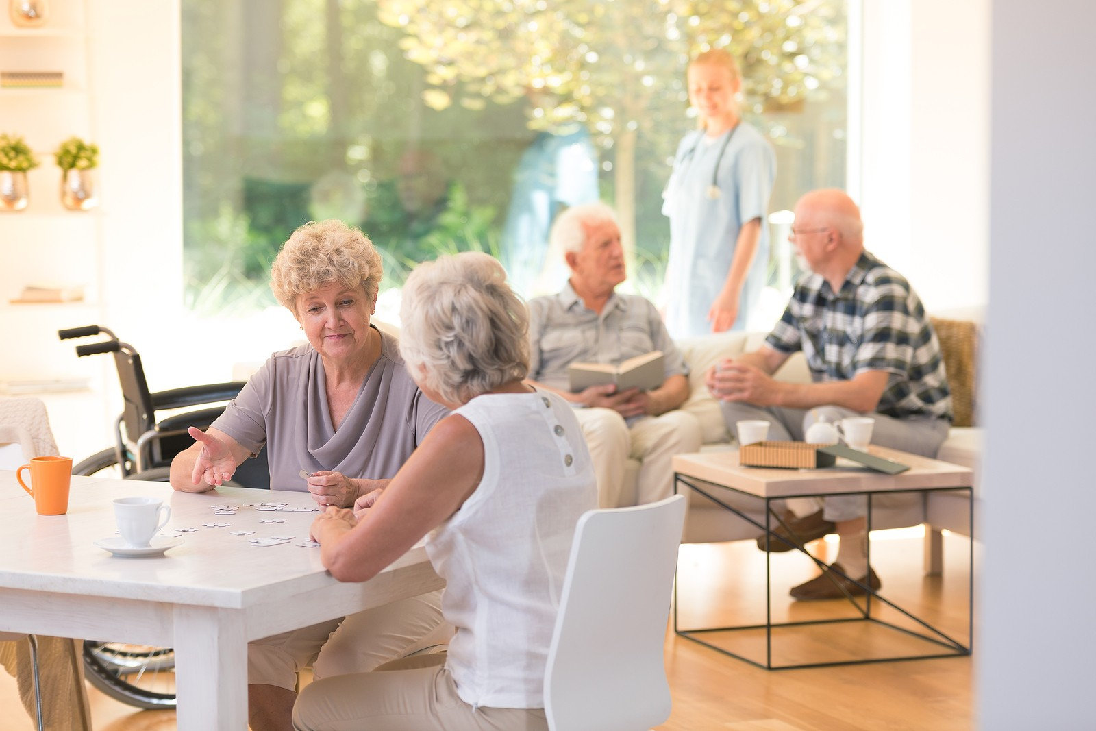 Group of seniors socializing in an assisted living facility